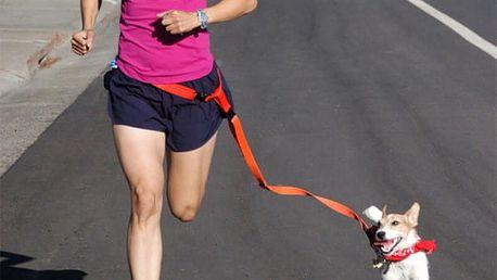Sportovní vodítko s popruhem kolem pasu - 6 barev
