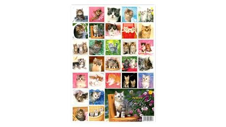 Pexeso - Kočičky - dodání do 2 dnů