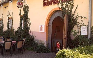 Pobyt pro 2 osoby v hotelu BAX*** na Jižní Moravě s polopenzí, přípitkem a lahví výborného vína.