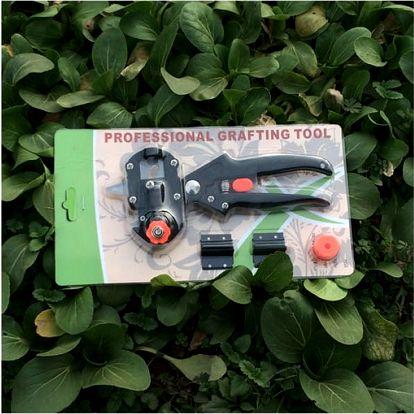 Roubovací zahradnické nůžky Graft