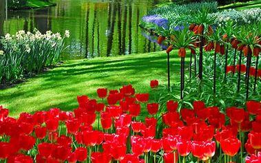 Amsterdam a květinový park v Keukenhofu