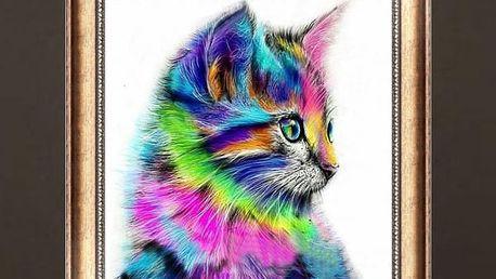 5D obraz 30 x 30 cm - Barevné koťátko