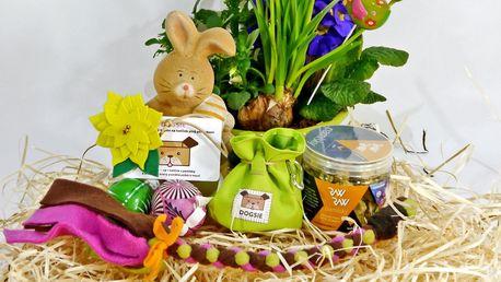 Velikonoční nadílka pro pejsky