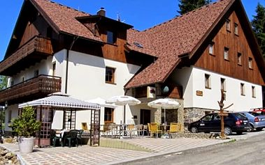 Pobyt s polopenzí pro dva a 1 dítě do 15 let v Penzionu Alpský Dům, večeře, letní vyžití aj.