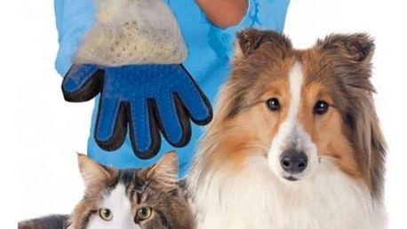 Masážní rukavice pro vyčesávaní zvířecí srsti