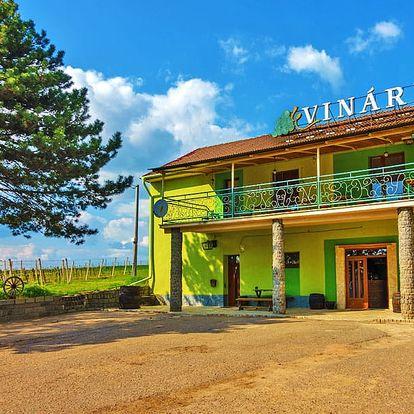 Vinařský pobyt na jižní Moravě pro dva s polopenzí a degustací vína