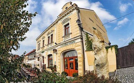 3 až 5denní pobyt s polopenzí v hotelu U Zeleného stromu pro 2 na Plzeňsku