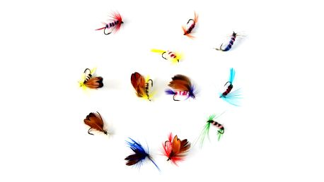 Sada rybářských mušek - 12 ks