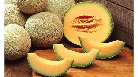 Meloun cukrový - 20 semínek - dodání do 2 dnů
