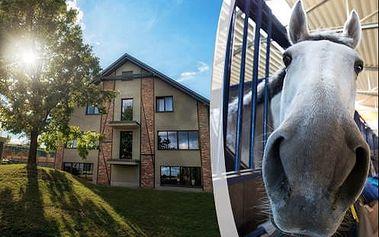 Pobyt v komfortní rezidenci s polopenzí a wellness jen 7 km od Krakova