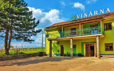 Jižní Morava pro DVA s polopenzí a degustací vína od místních vinařů
