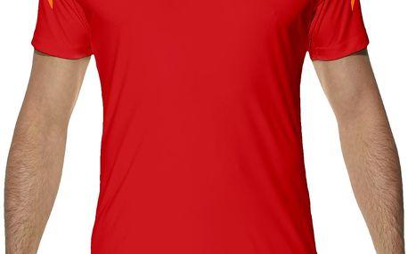 Pánské běžecké tričko Asics Stripe SS Top XXL
