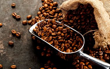 Pozdrav z Pražírny Drahonice: Delikátní káva