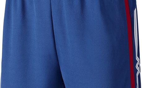 Pánské volejbalové kraťasy Mizuno Premium Shorts L