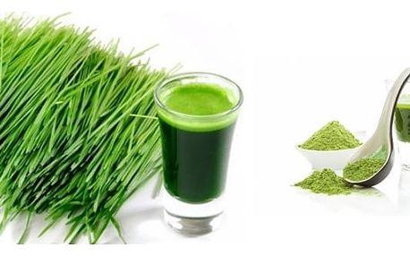 Hit jménem zelený ječmen 1000g - zelený zdroj zdraví v jedné sklenici. Pro silnou imunitu a regeneraci těla, koncentrovaná dávka vitamínů a minerálů.
