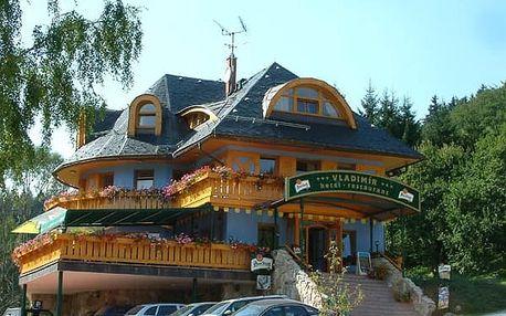 Letní pobyt pro 2 osoby na 3-5 dní ve 3* hotelu Vladimír s polopenzí.