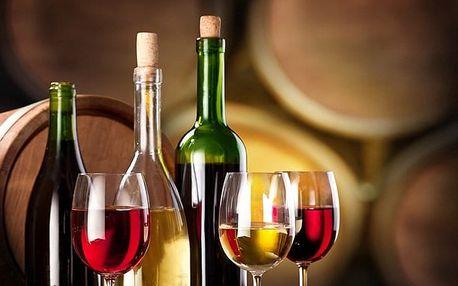 3–5denní vinařský pobyt pro 2 osoby ve Vinném sklípku v Moravské Nové Vsi