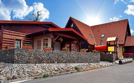 3denní wellness pobyt v penzionu Chata pod Sjezdovkou v Orlických horách pro dva či rodinu