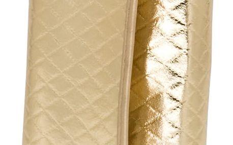 Kosmetické štětce Silver&Gold 12 ks v pouzdře