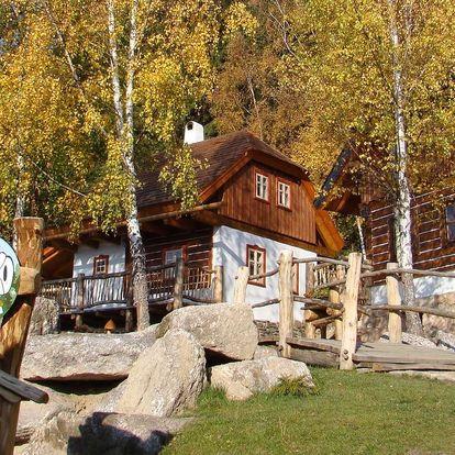 Pohádková vesnička Podlesíčko s ubytováním v chaloupce, polopenzí a bazénem, 2 dětmi do 12 let zdarma