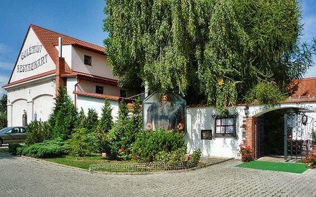 2 –3denní pobyt pro 2 v hotelu Golden Golem*** v klidném prostředí kousek za Prahou