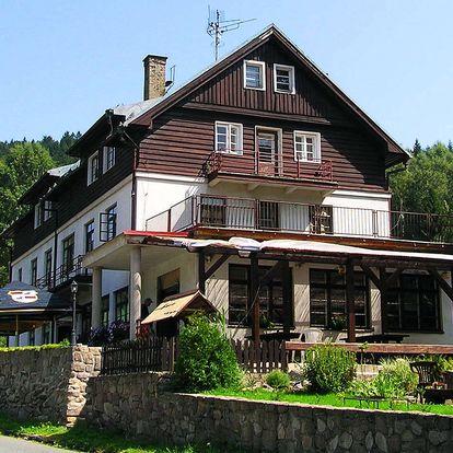Hotel Orlice *** v Orlických horách s polopenzí, dítě zdarma