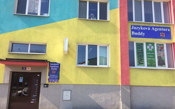 Jazyková Agentura Buddy
