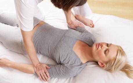 60min. masáž: sportovní relaxační, lávové kameny či shiatsu