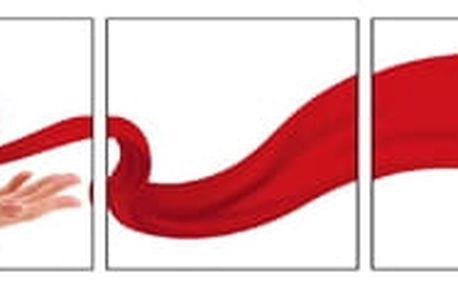Sada obrazů 3ks, motiv: dotek lásky