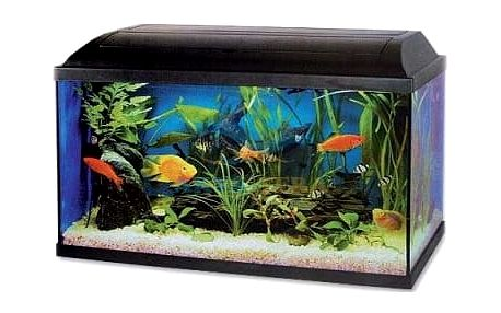 Akvárium set CAT-GATO PACIFIC 60 x 30 x 30 cm (54l), žárovka