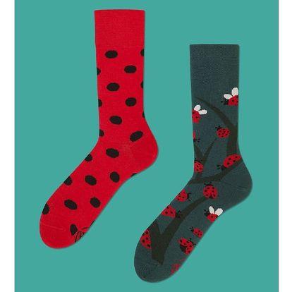 Ponožky Many Mornings Dots and Bugs, vel. 35/38