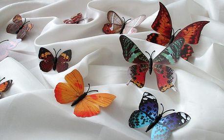 3D mnohobarevní motýlci na zeď 12 x 10 cm