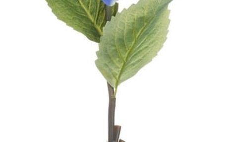 Modrá dekorativní květina Heaven Sends Hydrangea