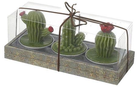 Sada 3 svíček Heaven Sends Cactus