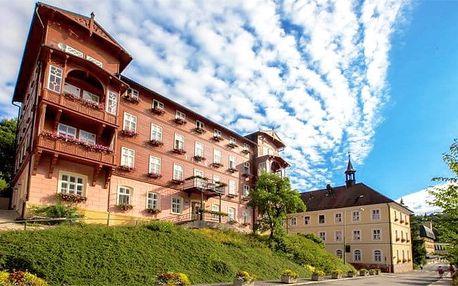 8denní lázeňský pobyt s polopenzí v hotelu Terra*** Superior pro 1 v Jánských Lázních
