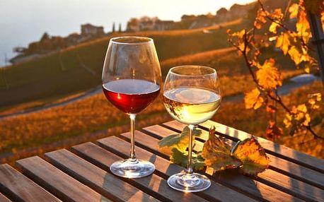 Vinařský pobyt ve Znojmě na 3 až 8 dní pro 2 osoby s polopenzí