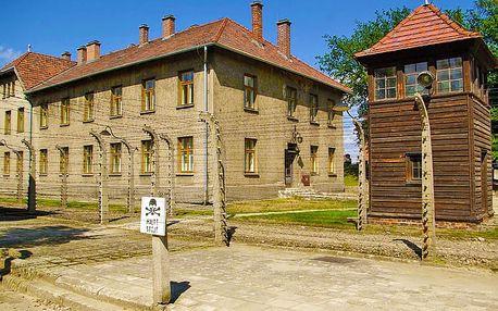 Za temnou historií: výlet do koncentračních táborů Osvětim a Březinka pro JEDNOHO