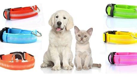 Svítící psí obojek s vysokou viditelností. Obojky jsou v různých barevných provedení a velikostech, zvyšují bezpečnost psa při noční procházce, takže se už o vašeho mazlíčka nemusíte bát.