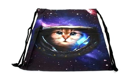 Moderní vak na záda cat in space