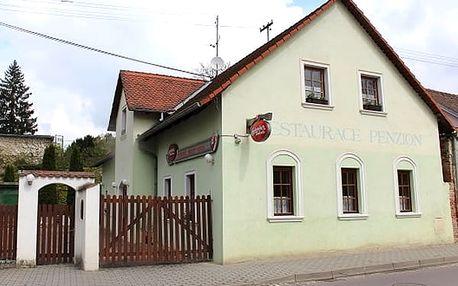 Pobyt pro dvě osoby v penzionu Herold, půjčení kola, láhev vína, paleta řízků.