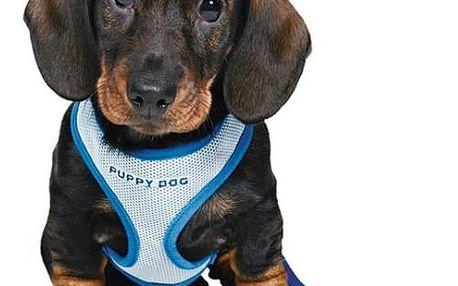 Postroj s vodítkem pro štěňata Trixie 26-34cm*10mm*2m modrá