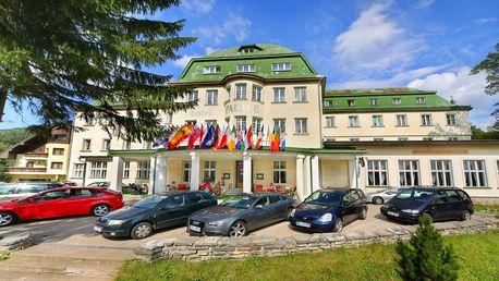 Hotel Palace Club*** - All inclusive pobyt a wellness v Krkonoších, dítě do 11,9 let zdarma