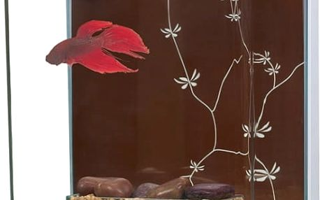 Akvárium MARINA Betta Kit Contemporary 3l