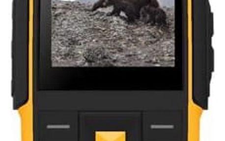 Aligator R20 eXtremo Black/Yellow