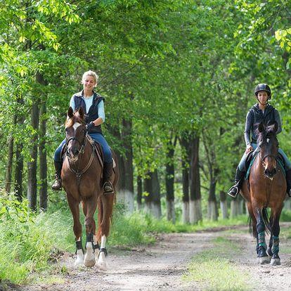 Romantický víkendový wellnes pro dva s projížďkou na koni v Jindřichově Hradci