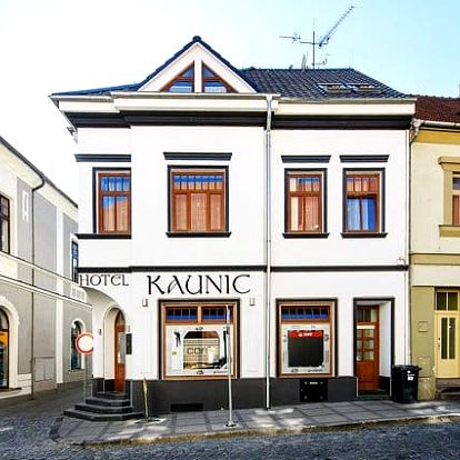 3–6denní pobyt se snídaněmi a vínem pro 2 v hotelu Kaunic*** v Uherském Brodě