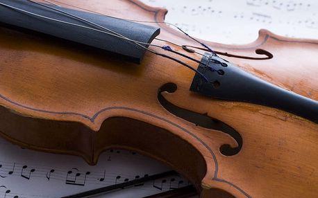 Hudební nástroje v dějinách - sbírka Jaromíra Růžičky