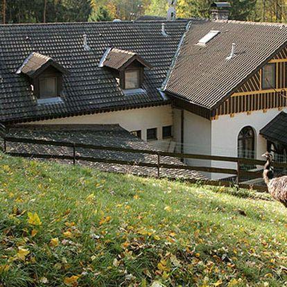 Vydejte se na Divoký západ a zažijte westernovou atmosféru ranče U Jelena poblíž Brna