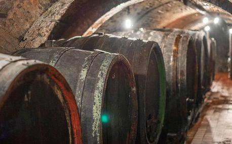 Řízená degustace včetně neomezené konzumace vín a polopenze v rodinném vinařství Reichman ve Velkých Pavlovicích pro dva
