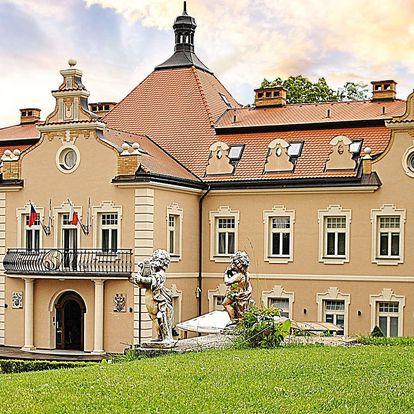Celodenní rodinná vstupenka do Dětského ráje na zámku Berchtold